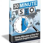 30 Minute SEO Ebook