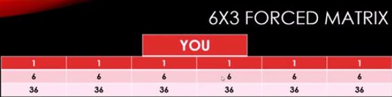 6x3 Forced Matrix